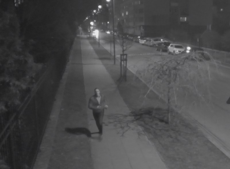 He stabbed a woman - the police are looking for him